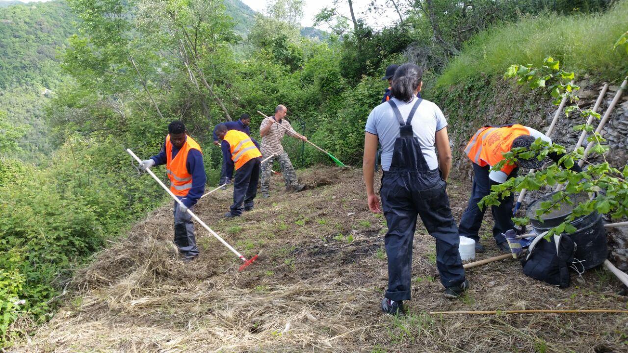 Ca'du Neng - lavori in orto